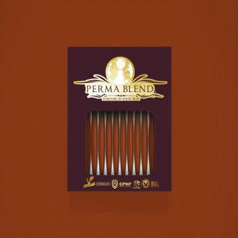 Perma Blend Pumpkin Single Service Sachets (10) (dated)