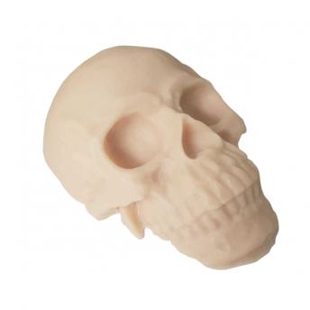 Reel Skin Skull